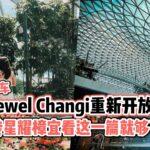 【免费停车!】Jewel Changi重新开放恢复运作 · 玩转星耀樟宜看这一篇就够了!